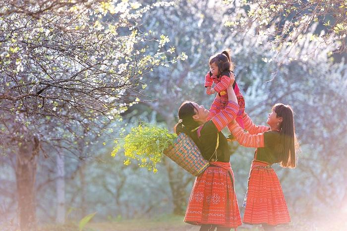 Mộc Châu - Mùa hoa trắng