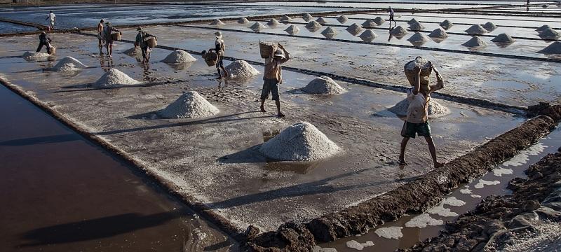 Nhọc nhằn nghề muối